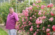 Pillnitzer-Gartentag-2013-25