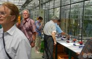 Pillnitzer-Gartentag-2013-60