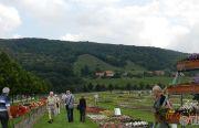 Pillnitzer-Gartentag-2013-34